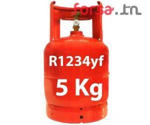 Charge climatiseur auto gaz 1234 YF