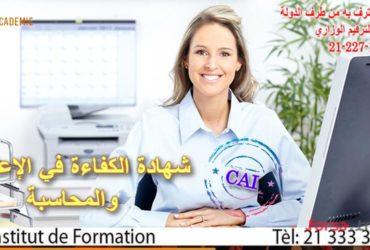 شهادة الكفاءة في الإعلامية والمحاسبة