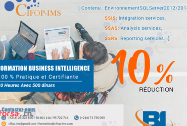Promo : Formation Business Intelligence