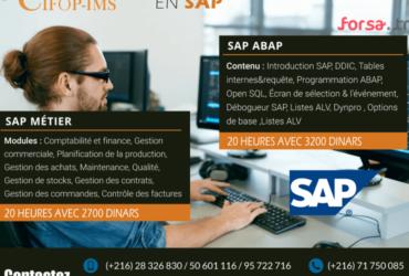 Formation en SAP (Métier et Paramétrage)