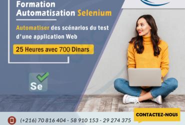 Formation Automatisation Sélénium – Tunisie