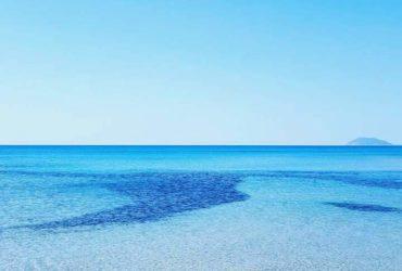 des appartements à vendre à plage elghzez 55201288