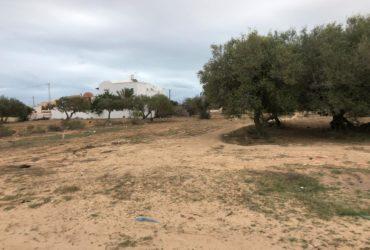 Un terrain de 470 m² à vendre à Sidi Sofien banlieue de Djerba Midoun zone urbaine
