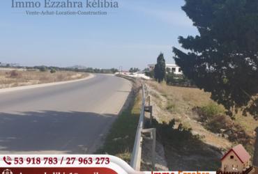 720 m² sur la route principale de Kélibia  Tri9 7izamia